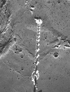 fotos trucadas por la NASA
