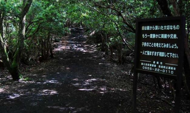 El Bosque Aokigahara, un lugar perfecto para morir